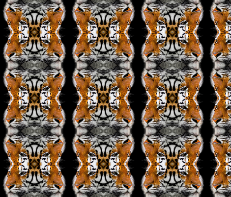 Tigers fabric by kleinerpfau on Spoonflower - custom fabric