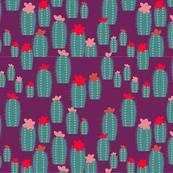 Cactus Bender