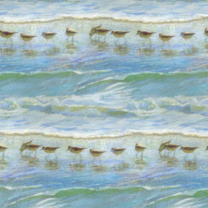 Sandpipers, A Day at the Beach