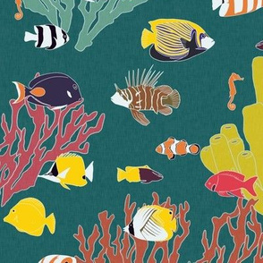 Large Scale Reef Fish on Turquoise
