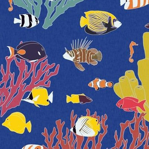 Reef Fish on Blue