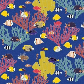 Small Scale Reef Fish on Blue