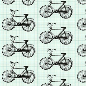 Bikes on Blue Graph Paper