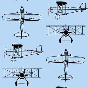 Biplanes on Baby Blue // Large