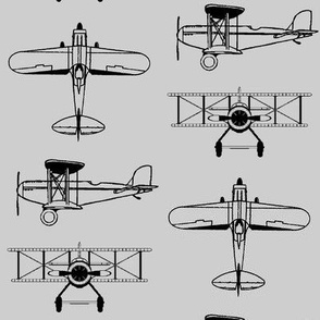 Biplanes on Silver // Large