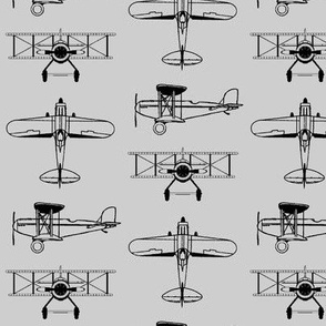 Biplanes on Silver // Small
