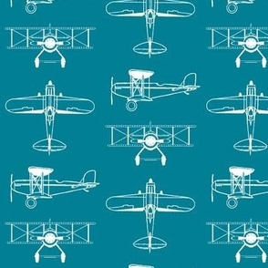Biplanes on Teal // Small