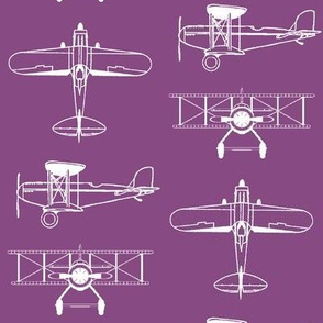 Biplanes on Cannon Pink // Large