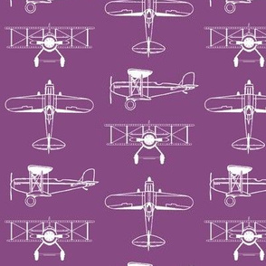 Biplanes on Cannon Pink // Small