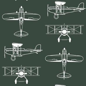 Biplanes on Timber Green // Large