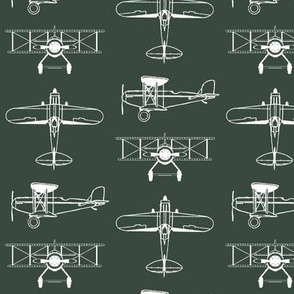 Biplanes on Timber Green // Small