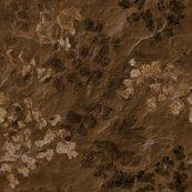 Rfern_fossils_in_brown_slate_24in_shop_thumb
