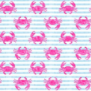crabs - pink on blue stripes