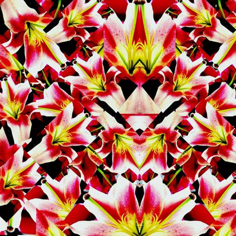 Wild Flower fabric by bejilledbyjillimac_designs on Spoonflower - custom fabric