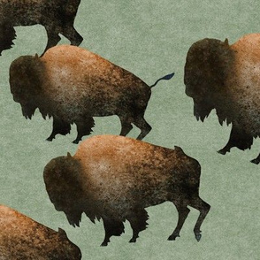 Bison Herd on Green