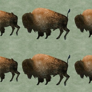 Bison Line on Green
