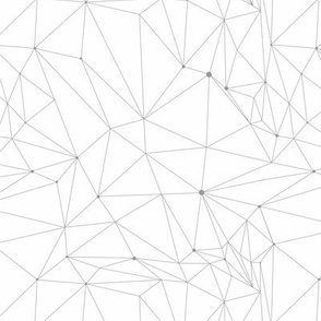 White polygonal geometric pattern