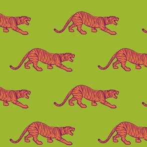 Stalking Tiger (citrus bright)