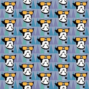 Cool Boston Terrier