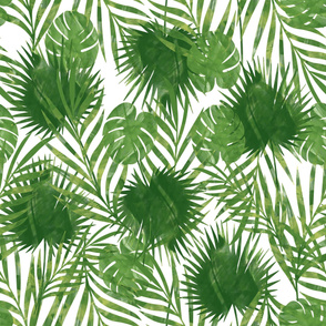 Tropical Palm Leaves - Jumbo