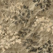 Rrfern_fossils_tan_slate_24in_shop_thumb