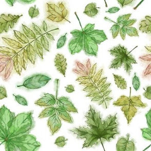 Green Forest Leaves Hand Painted in Watercolor