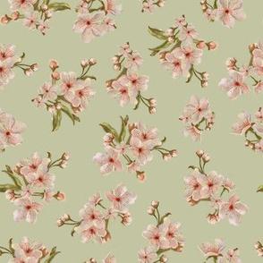 Sakura Inflorescence Pattern in PEACH Tone