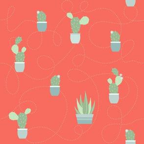 cactus garden - red