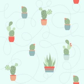cactus garden - aqua