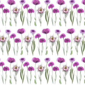 pink and purple flowers stripe