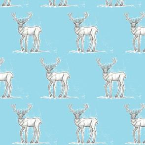 Buck by Leah Kerschner
