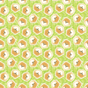 Big Bad Floof - Cream Pomeranian on Green