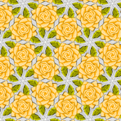 Pale Orange Roses on Mesh