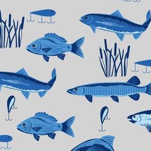 Fish Freshwater Blue Gray Large