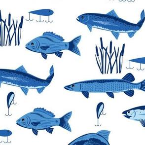 Fish Freshwater Blue White Large