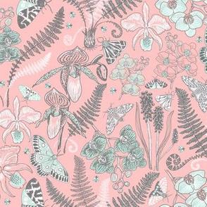 Orchid Botanical Study #021318 (mint-grey on peach)