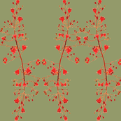 2941 Illawarra-Flame-Tree #1-Green
