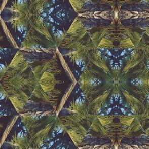 White Mountain Kaleidoscope No. 2