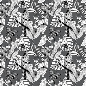 junglelife grey