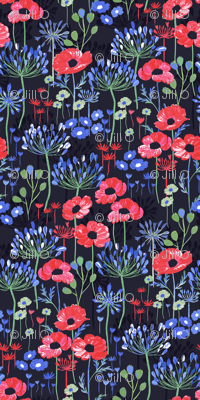 Poppies and Agapanthus