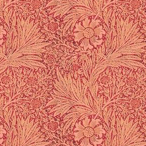 Morris Marigold Coral