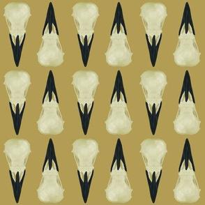 Raven Skulls