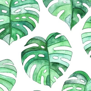 Heart Shaped Watercolor Monstera Leaves - green & white - large