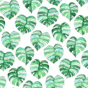 Heart Shaped Watercolor Monstera Leaves - green & white - small