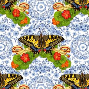 Blue Rhapsody Swallowtail