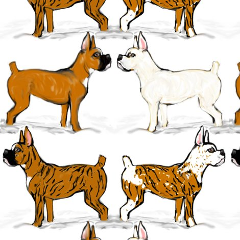 Rrassorted-boxer-dogs-in-snow_shop_preview