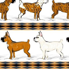 Assorted Boxer Dogs in Snow Stripe