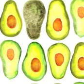 Rwatercolor-avocado-01_shop_thumb