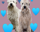 Rwheatens-with-hearts_thumb