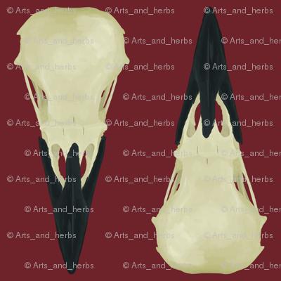 Raven Skulls on red background